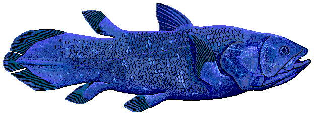 Coelacanth flipped