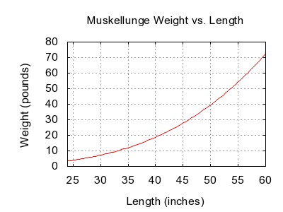 Muskellunge weight length graph