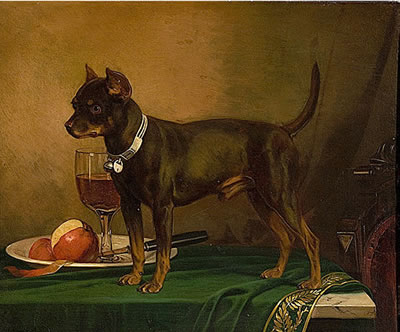 Frederick August Wenderoth 1875, Little Terrier