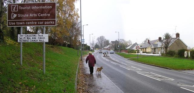 Dog walking, Hospital Road, Omagh - geograph.org.uk - 1048920