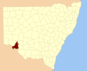 Taila NSW.PNG