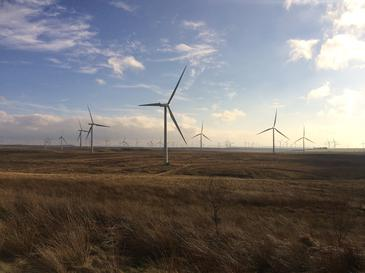 Renewable Wind Farm Scotland