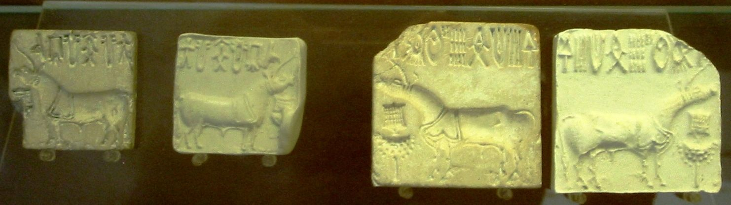 IndusValleySeals unicorns