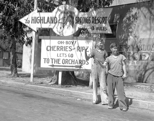 Hitchhikers, 1939 crop