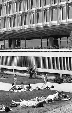 Women sunning selves at Geneva headquarters of World Health Organization, 1969