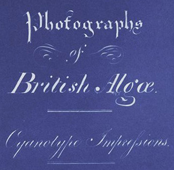 Anna Atkins Title Page of Photographs of British Algae Cyanotype Impressions (Detail)