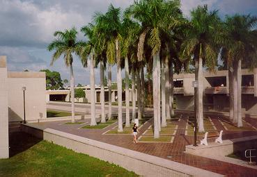 A grid of palm trees arranged in a tiled courtyard stands to the right of a dormitory building.