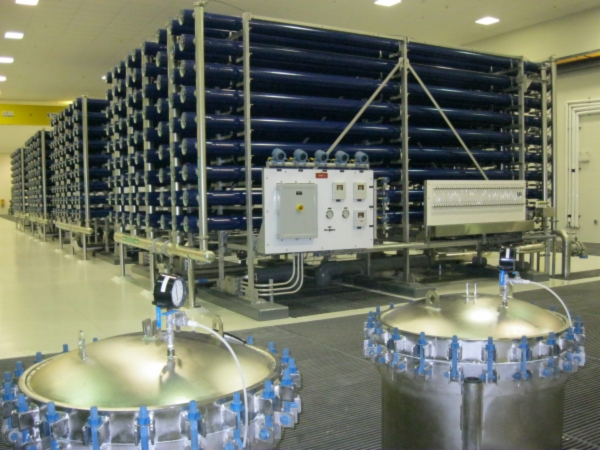 Northcapecoral-RO