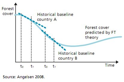 Forest transition theory
