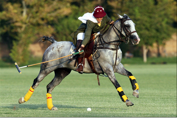 Iranian girl polo player