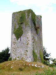 Ireland tower house near quin county clare