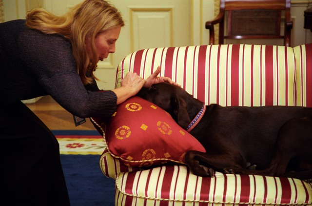 Joni Michtell pets Buddy in the oval office