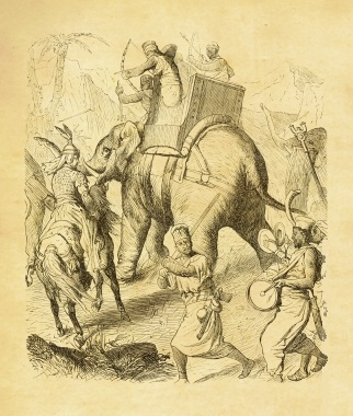 Indian war elephant