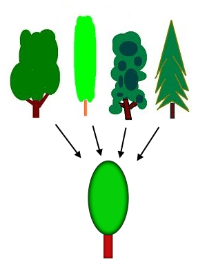 Generalization process using trees PNG version