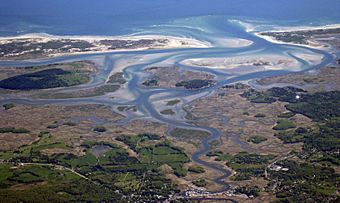 The Great Marsh in Plum Island, Newbury, and Ipswich, Massachusetts