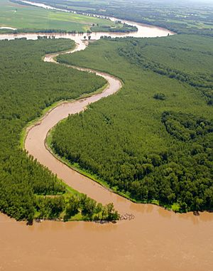 Aerial of Jameson Island in the Big Muddy , view looking south