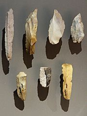 Burins and blades - Bernifal - Meyrals - MNP