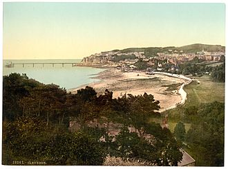 Clevedon 1890s