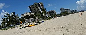 Beach in Fort Lauderdale, Florida (2014)