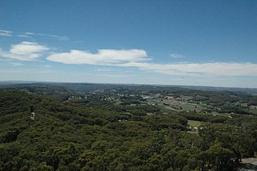 Piccadilly from mt lofty.jpg