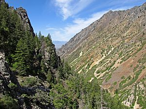 American Fork Canyon from Timpanogos Cave entrance