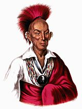 Chief Black Hawk3