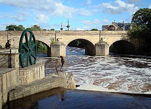 Wetherby - Bridge