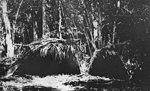 Cape Bedford shelters, Queensland, 1920s