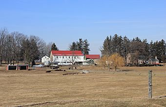 Christian Schlegel Farm 4.JPG