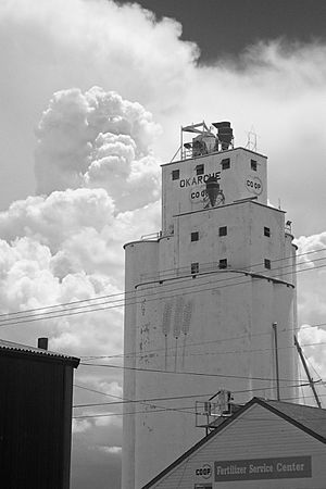 Gain Elevator in Okarche, OK (4244774911)
