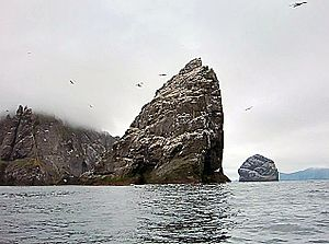 Stac an Armin and Boreray
