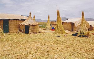Uros Indian woman at work on a reed island in the titicace lake in Peru