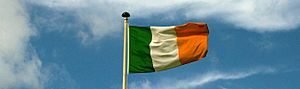 Irish flag (220399586)