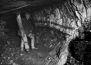 Miner underground at Pumsaint gold mine (1294028)