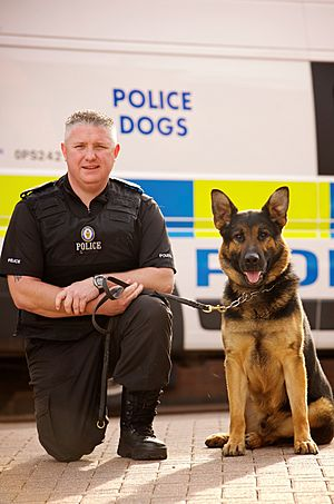 Day 254 - West Midlands Police - Police Dog Axel (7971043714)