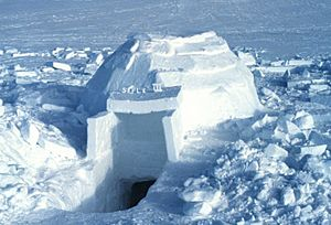 Igloo Facts for Kids