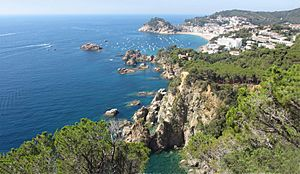 Tossa de Mar View
