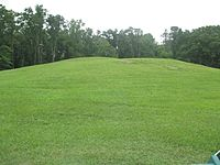 Mound B at Poverty Point IMG 7424