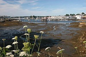 Boothbay Harbor, summer morning at low tide