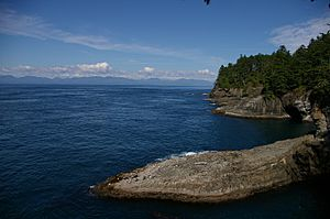 Cape Flattery looking north