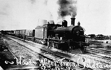 G22 + goods train, Ooldea, 1919.jpg
