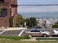 Northern view from Alta Plaza Park. The Marina District and San Francisco Bay can be seen below.