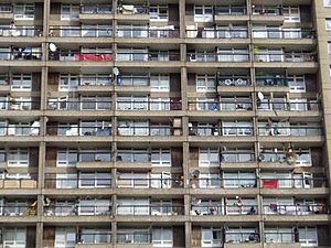 Balconies of the Trellick Tower