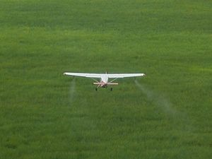 Cessna spraying red locusts in Iku Katavi NP