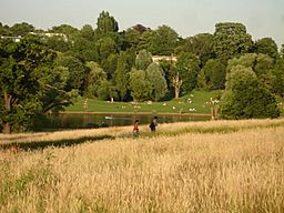 Hampsteadheath1