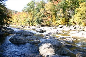 Haystacks1 Loyalsock Creek Sullivan Co PA.jpg