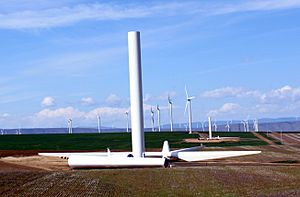 Biglow Canyon Wind Farm under construction