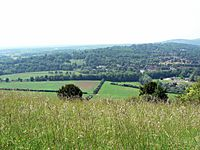 Boxhill surrey viewfromtop
