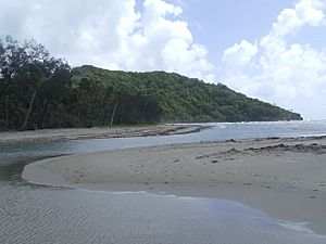 Cape Tribulation head, near Dubuji Boardwalk