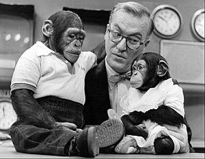 Dave Garroway J Fred Muggs Today show 1954